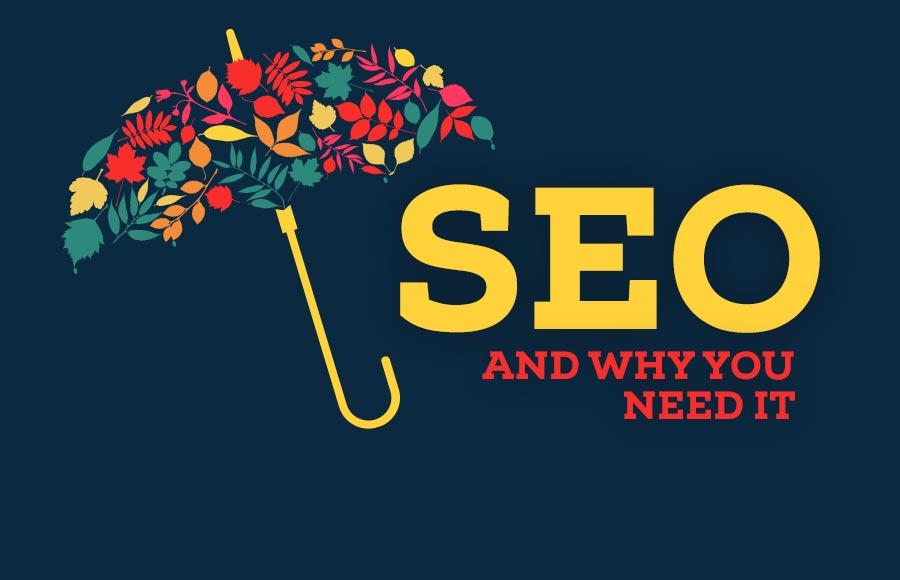 why-website-need-seo